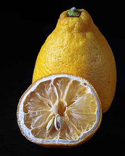Lemon-I