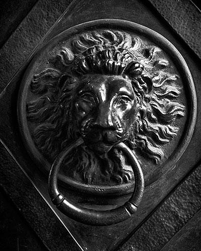 lion door knocker earrings gold head