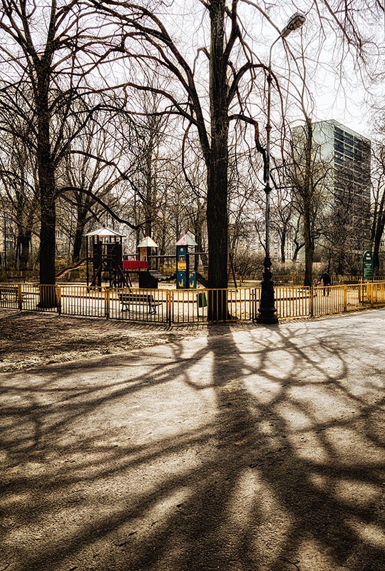 morning-park