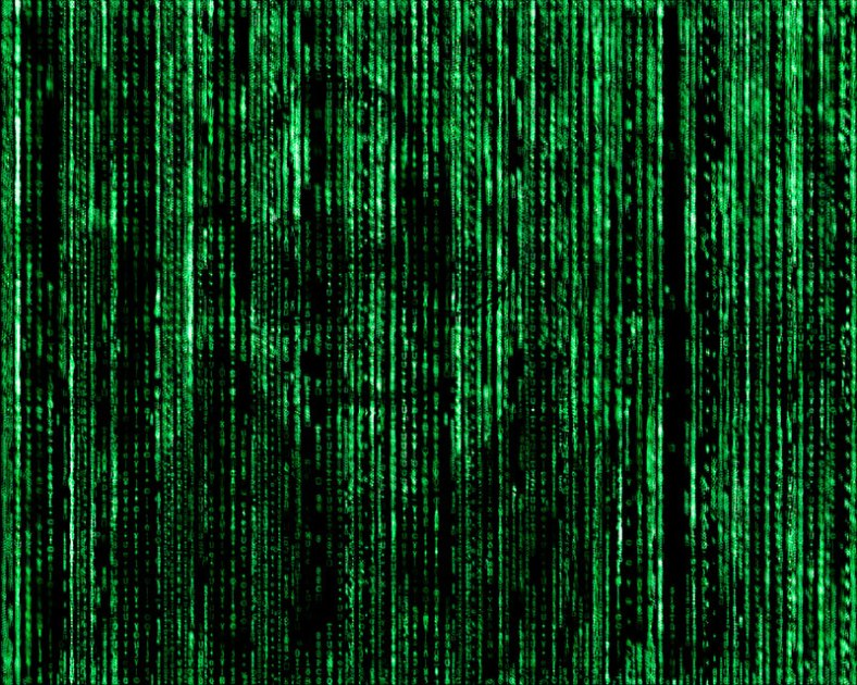 Gosia-in-the-Matrix