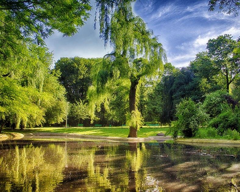 summer-park-HDR
