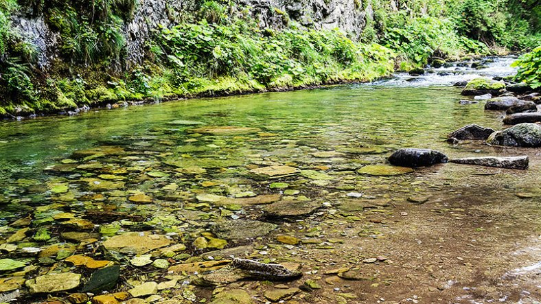 Tatra-river
