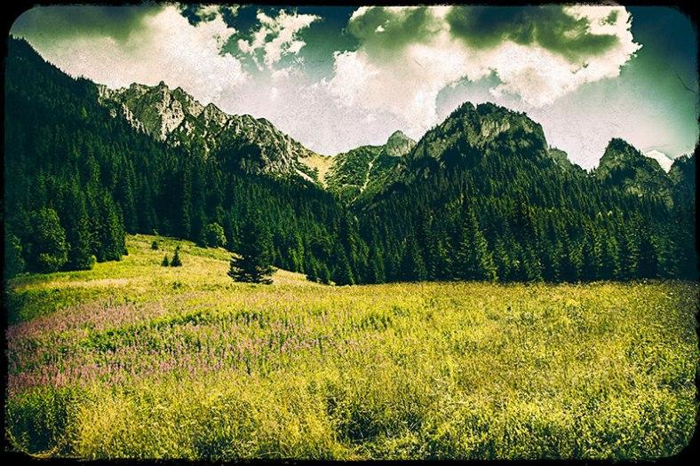 Zakopane-Landscape