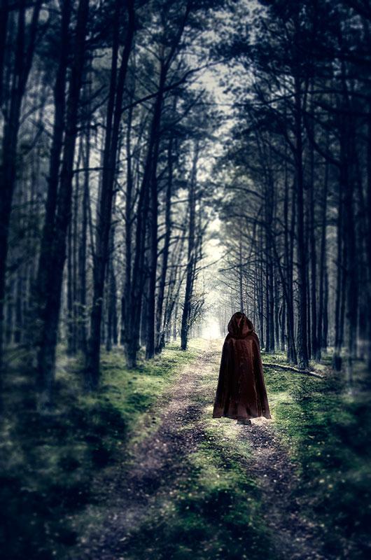 Fantasy Forest Insta