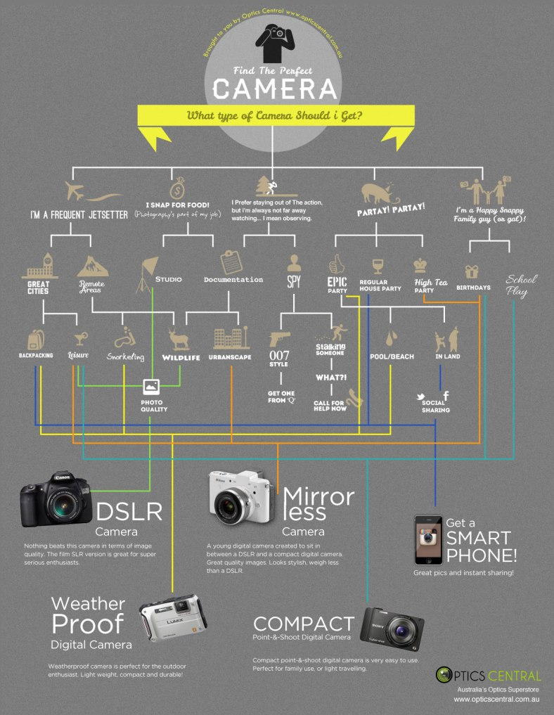 Choosing the right camera flow chart