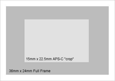 crop_sensor
