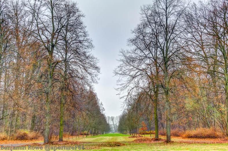 Winter Park3