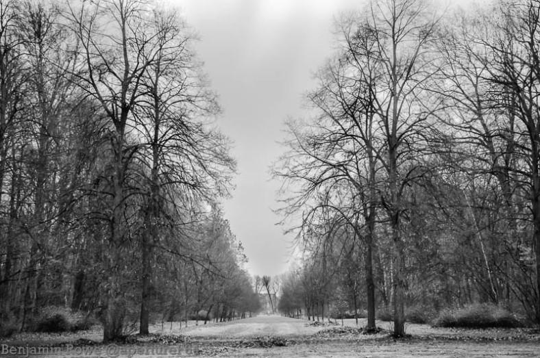 Winter Park4