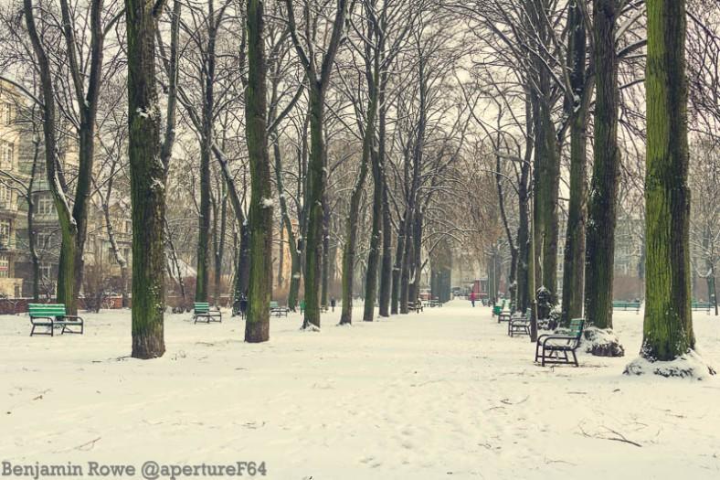 Winter Park Snow