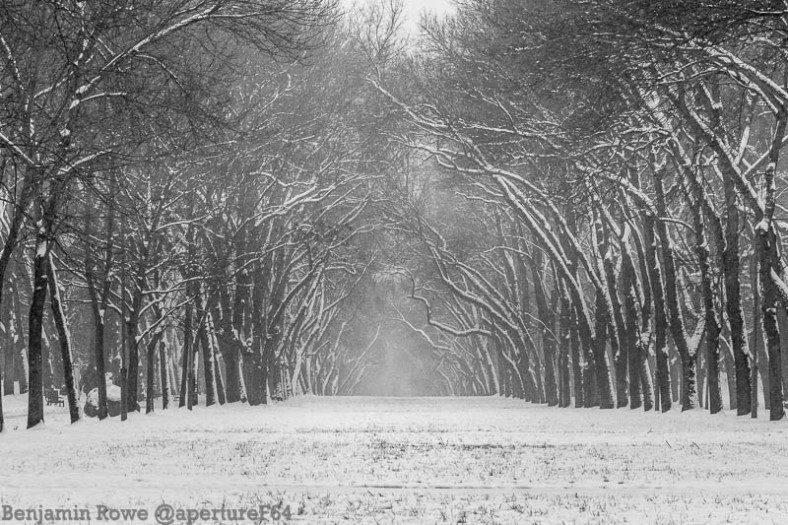 Zdrowie Park Lodz Winter