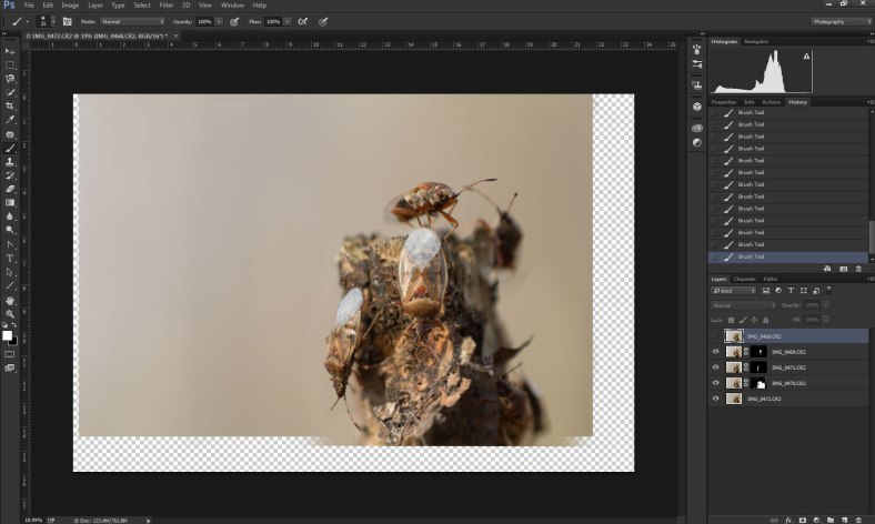 masking-for-focus-stacking