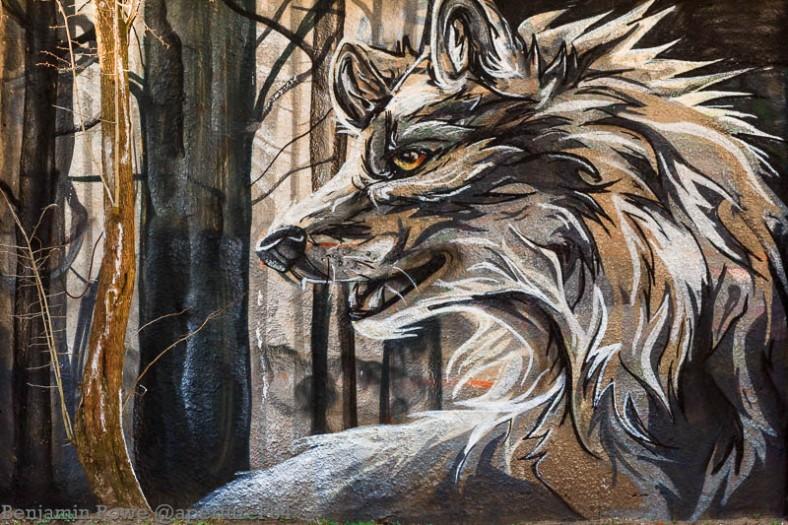 Wolf Graffiti_