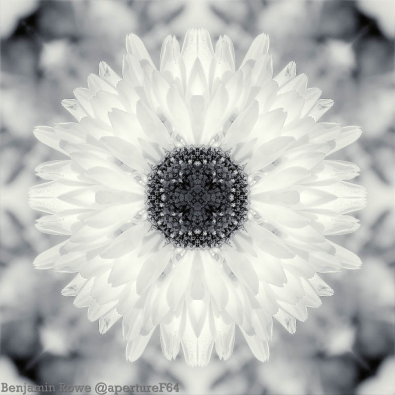 BW infrared Symmetry