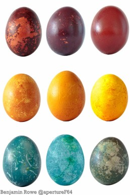Natural Dyed Egg Collection