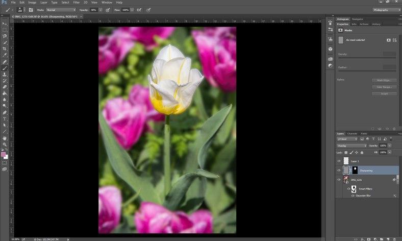 Flower-end-edit