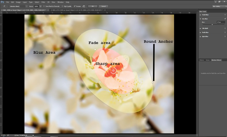iris-blur-diagram
