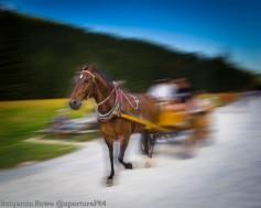 Zakopane Horse and Trap