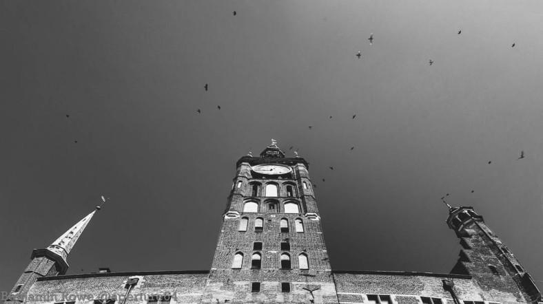 Looking Up Gdansk