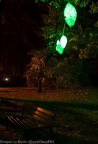 Light Move Festival 2015-5